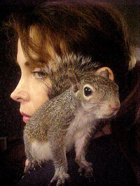Squirrel on my shoulder by vernabeth