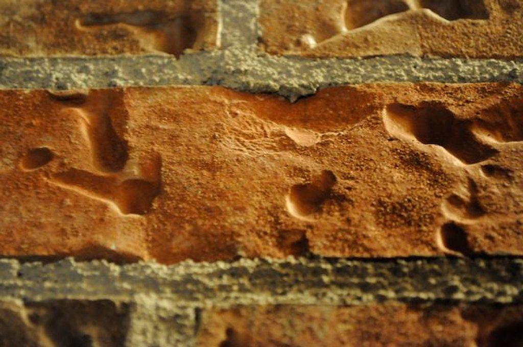Hitting the brick wall by dora