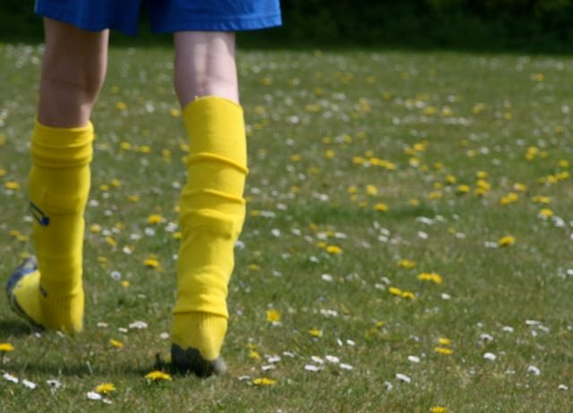 Co-ordinating Socks and Dandelions by helenmoss