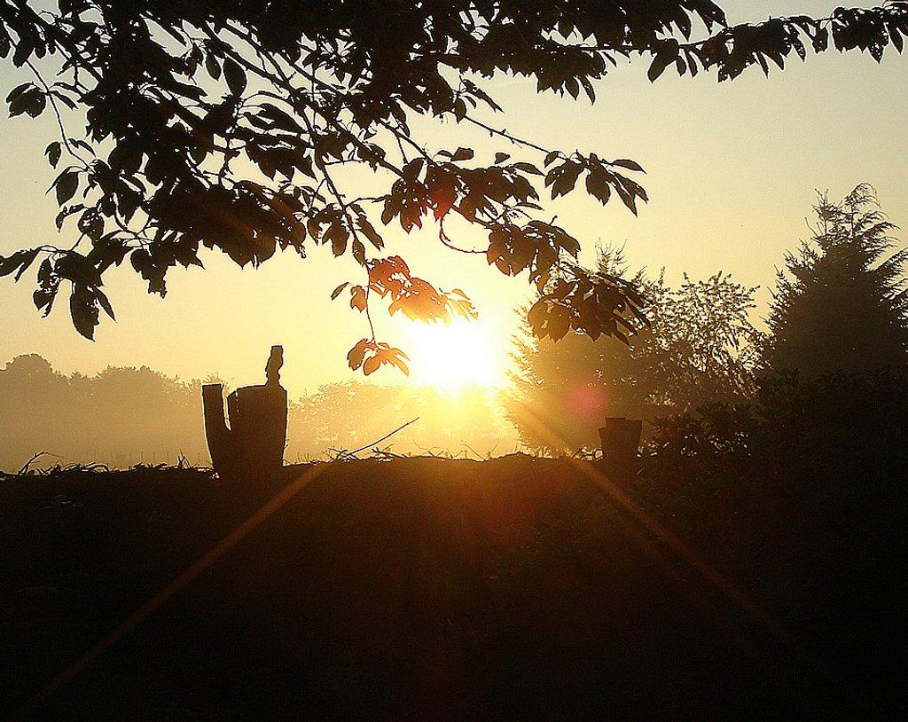 sunrise by gijsje