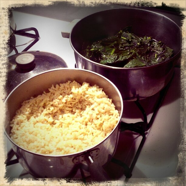 Brown Rice and Kale by bambilee
