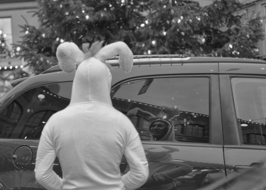 This Rabbit Arrived To The Wrong Holiday... by seattle