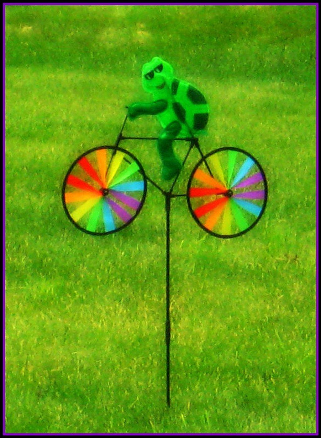 Whimsical by olivetreeann