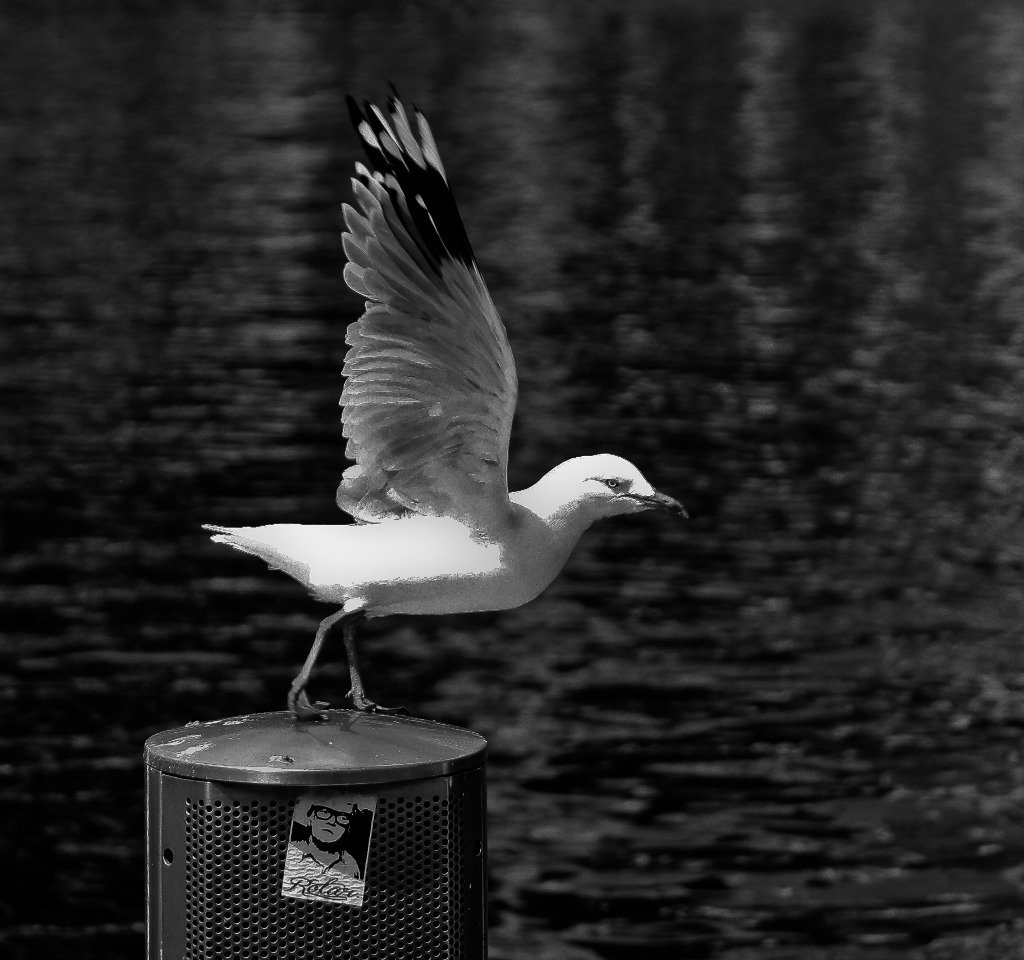 I'm outta here by abhijit