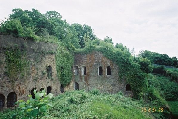 nature through the ruins by tetra2709