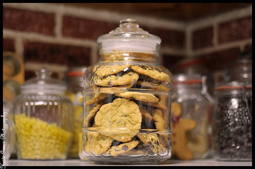 I do it all for the cookies! by hmgphotos