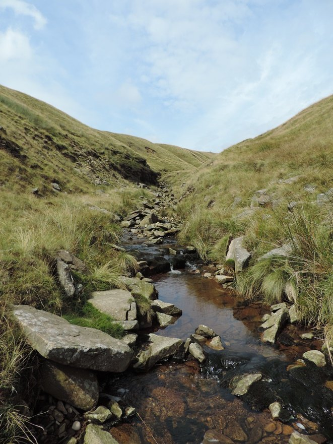 Walking up Pendle Hill by roachling