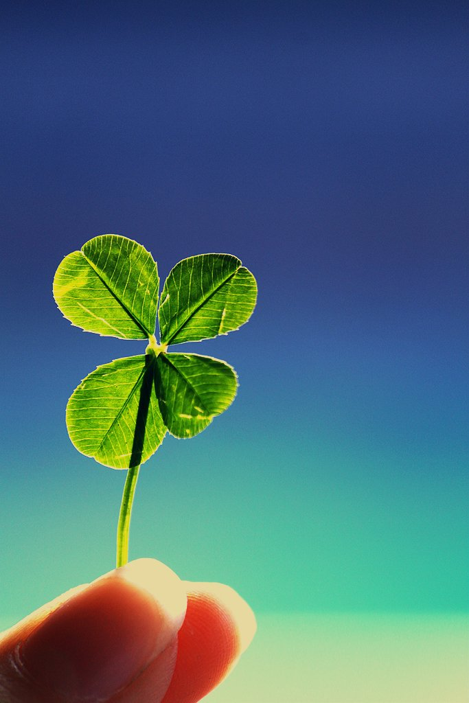 lucky :) by pocketmouse