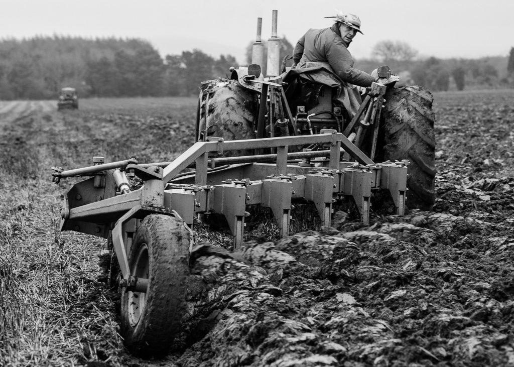 Plough - 6-04 by barrowlane
