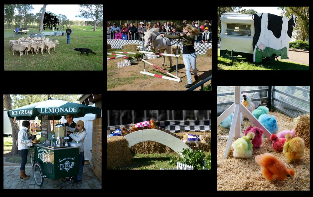Tocal Agricultural College Field Day by onewing
