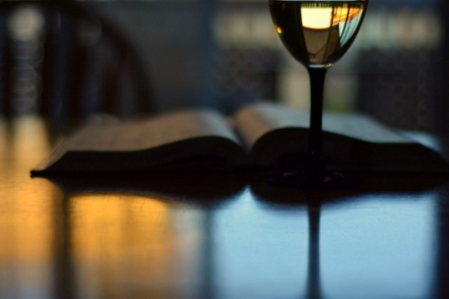 Book + Wine = Good Evening by jayberg