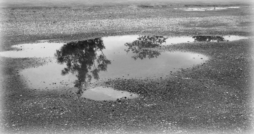 Black and white puddles by mittens