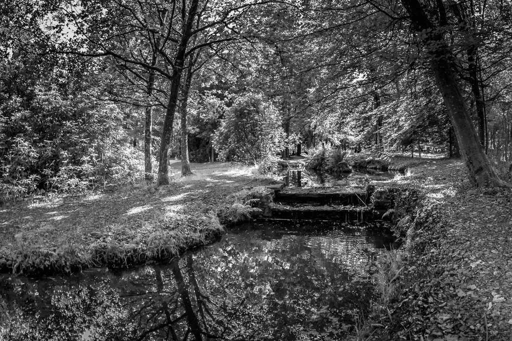 Paimpont:  Woodland pools in the Parish Gardens by vignouse