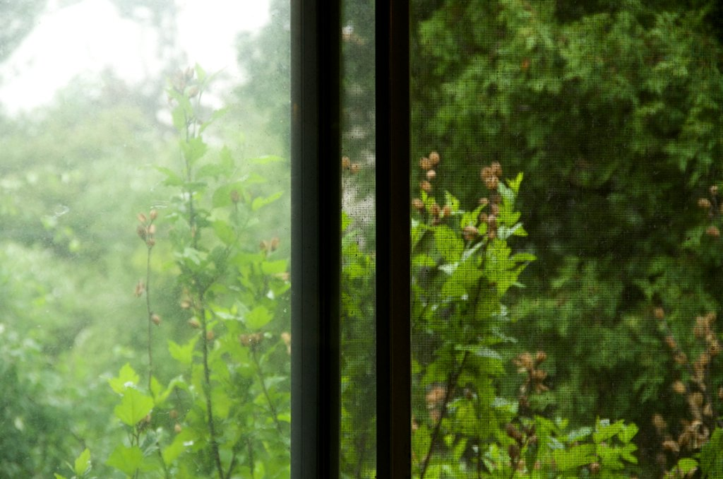 Outdoors seen from indoors by houser934
