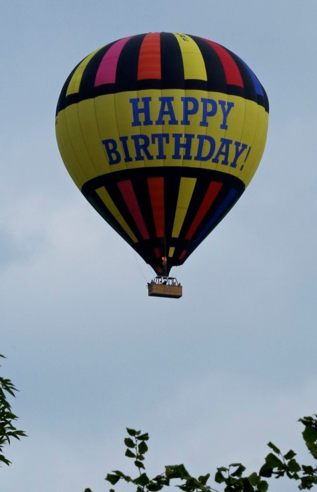 Birthday Balloons! by nicolaeastwood