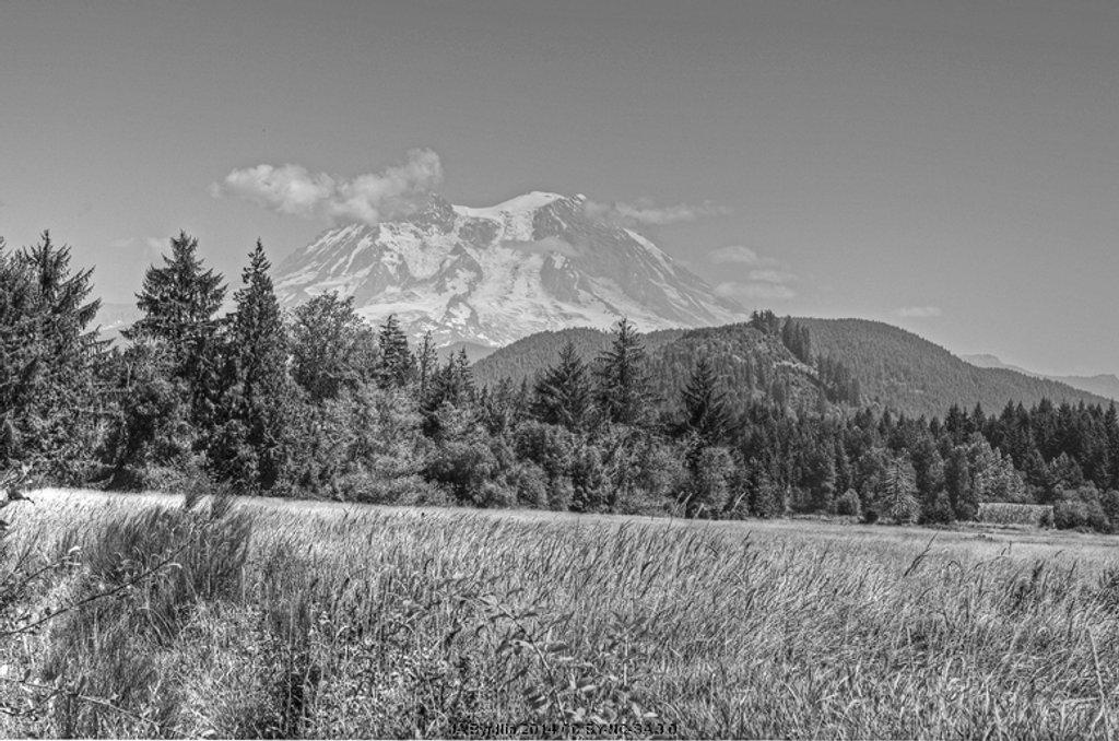 Mt Rainier from Mineral by byrdlip