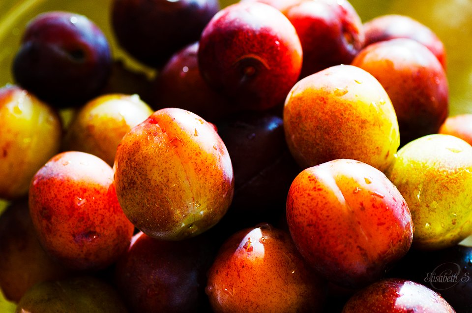 Plums by elisasaeter