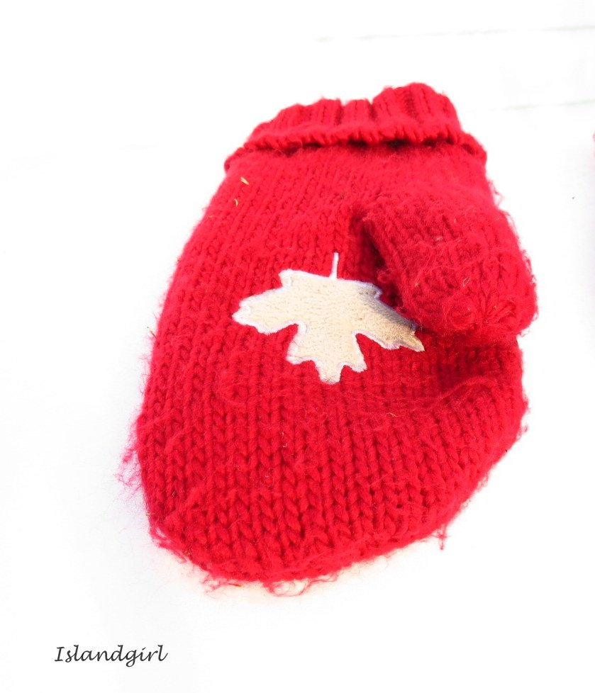 Red Mitten   by radiogirl