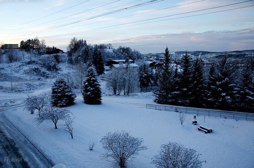 Winter landscape by elisasaeter