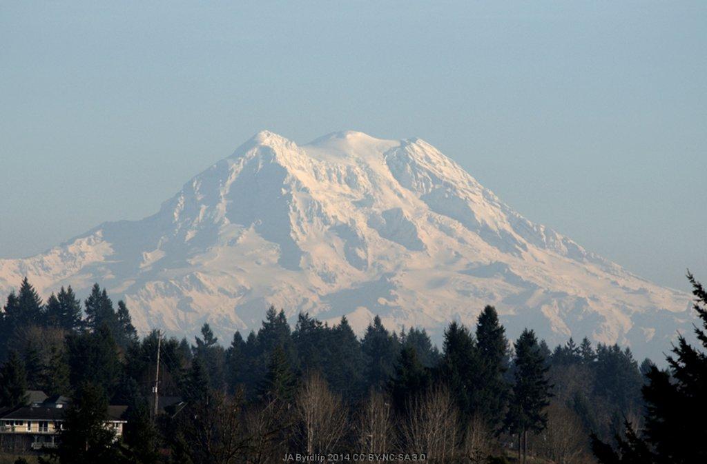 Mt Rainier in SunShine by byrdlip