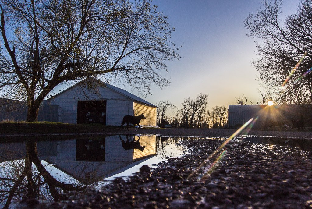 reflection by aecasey