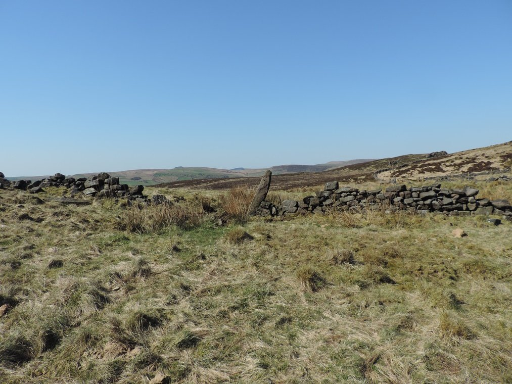 A moorland walk by roachling