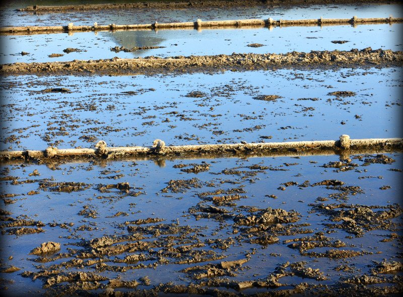 Salt pans by moya