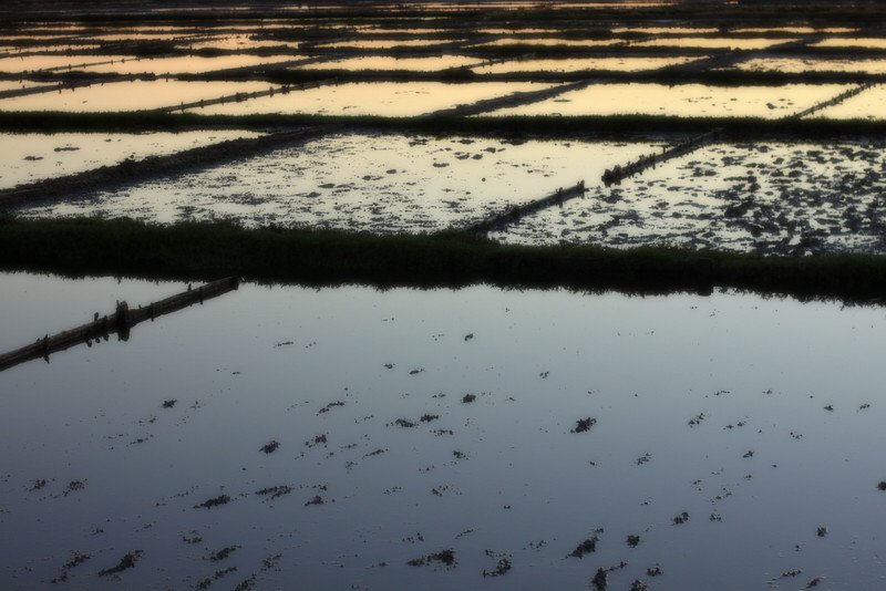 Salt pans at sunset by moya