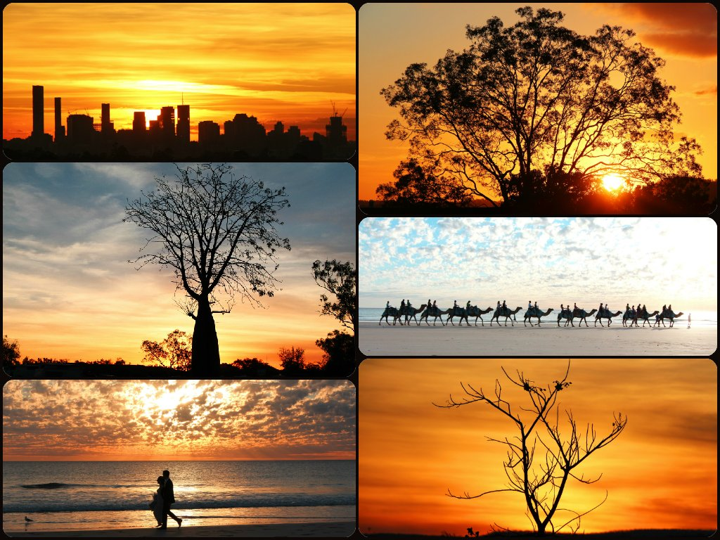Silhouettes Collage by terryliv
