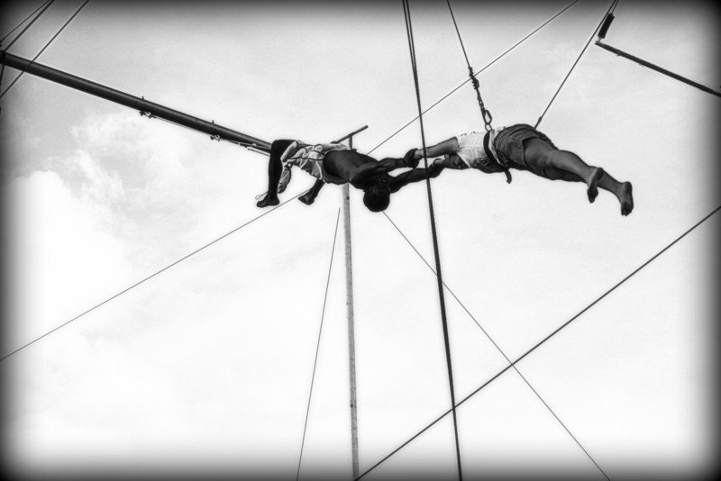 Flying trapeze by moya