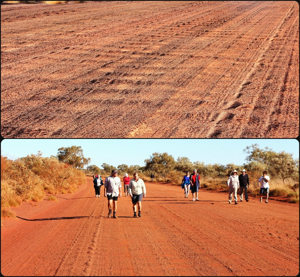 Day 16 - Tanami Track by terryliv