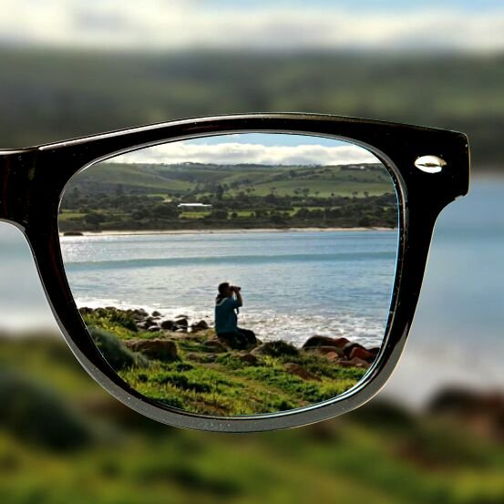 Whale Watching by leestevo