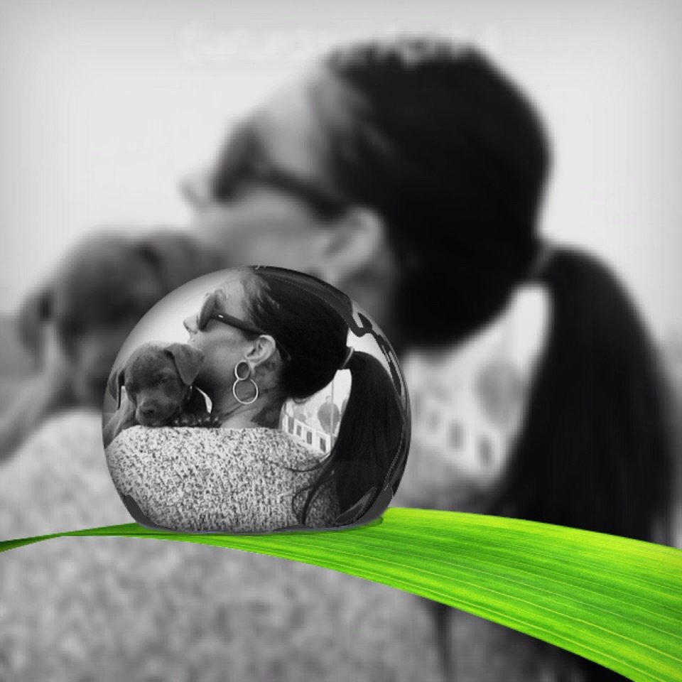 My Daughter and her new Puppy by radiogirl