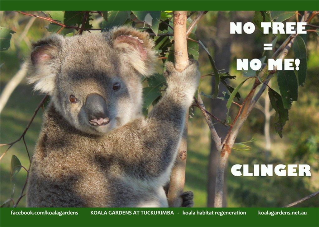 Sep koala calendar page by koalagardens