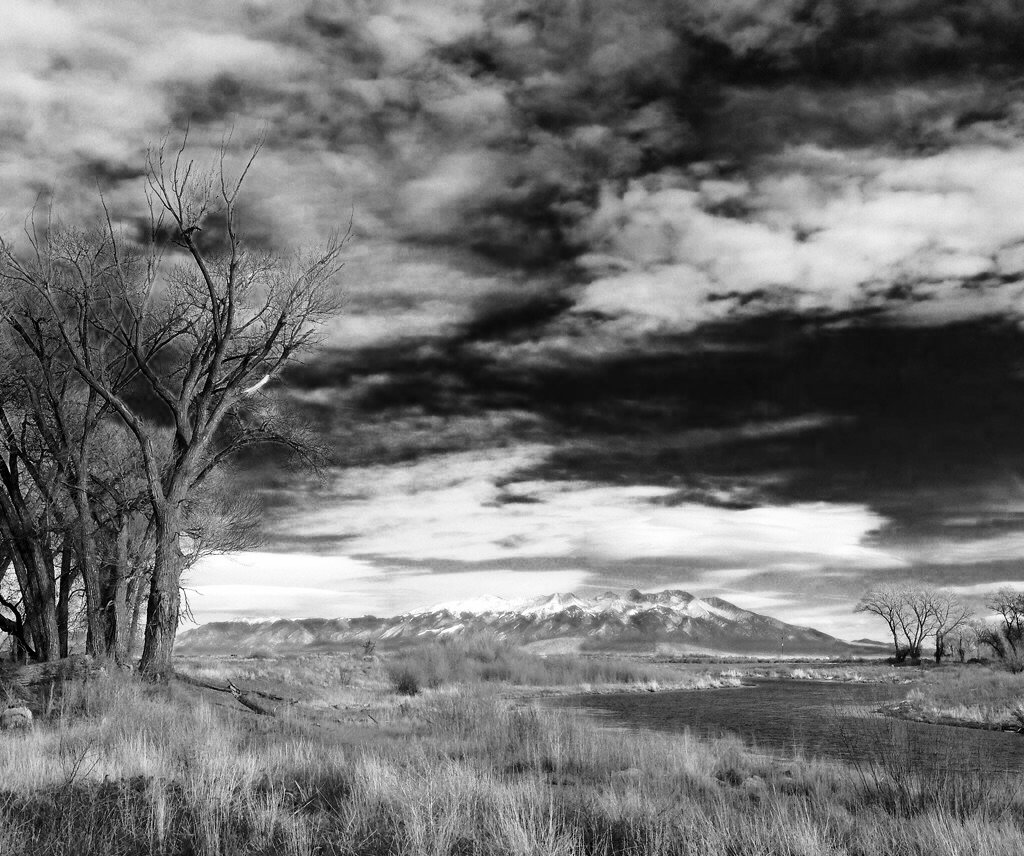 A windy cloudy day by carrieoakey