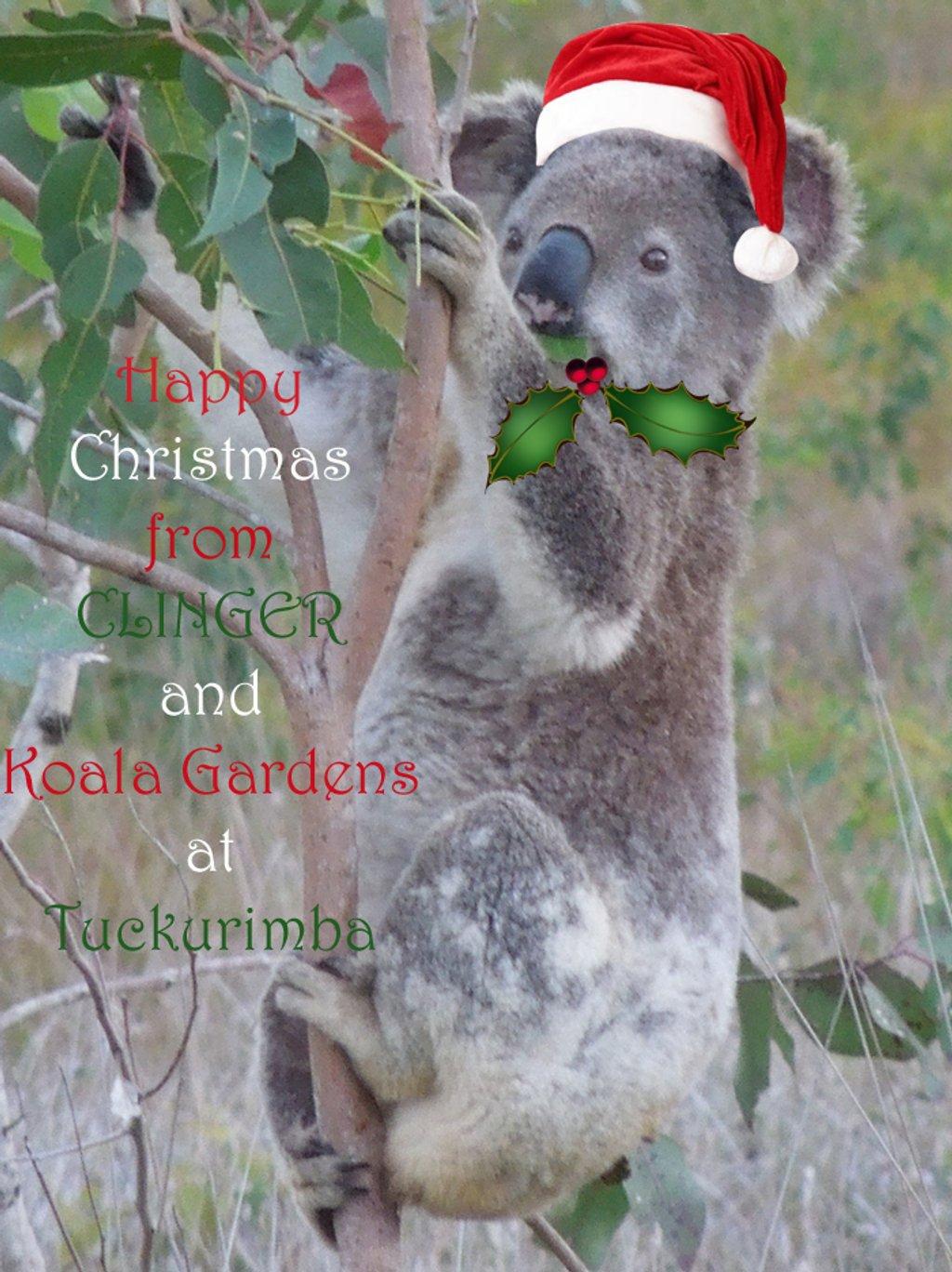 ho ho ho by koalagardens