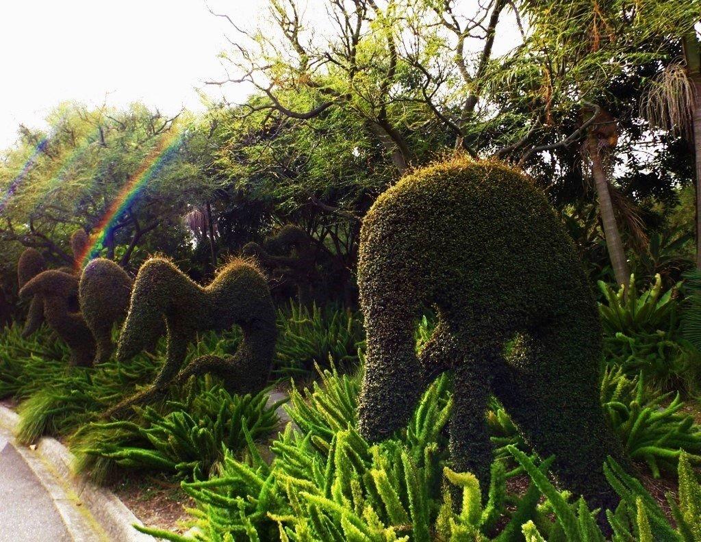 Topiary...No.1 by happysnaps