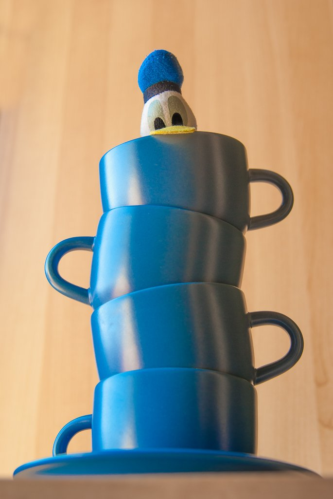 (Day 110) - Duck in a Cup  by cjphoto
