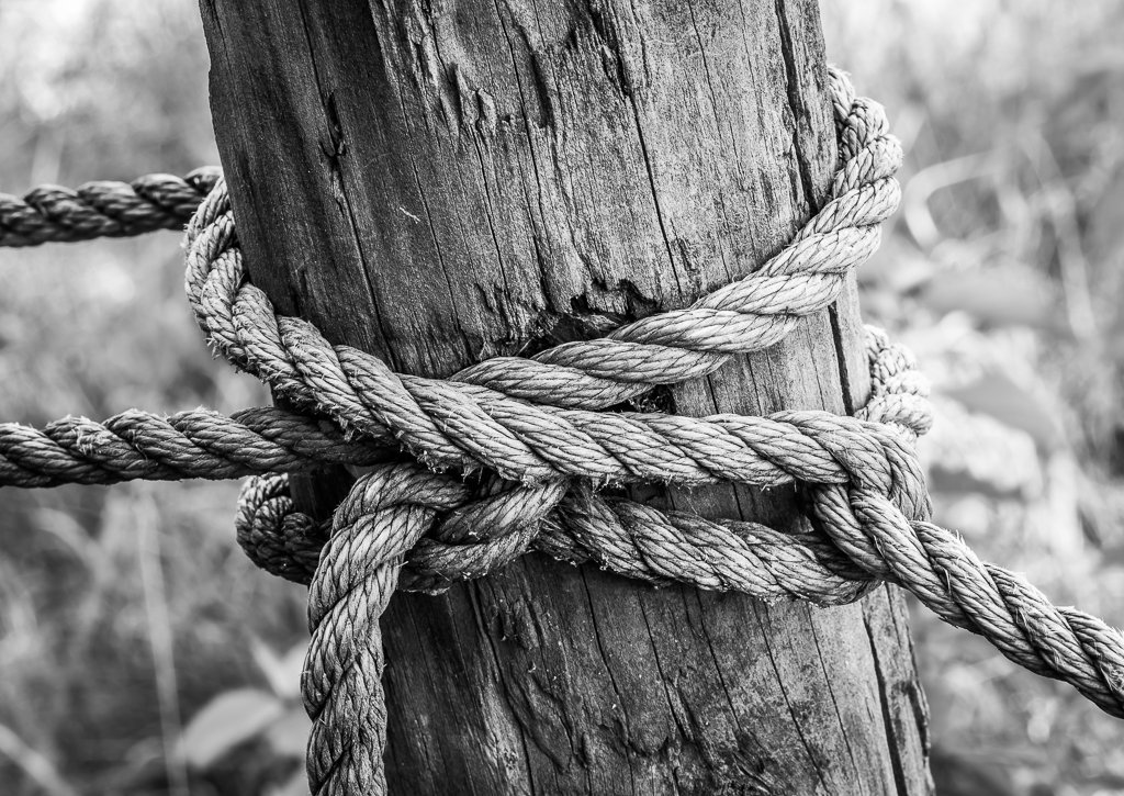Form and Textures - Rope and Post by jeetee