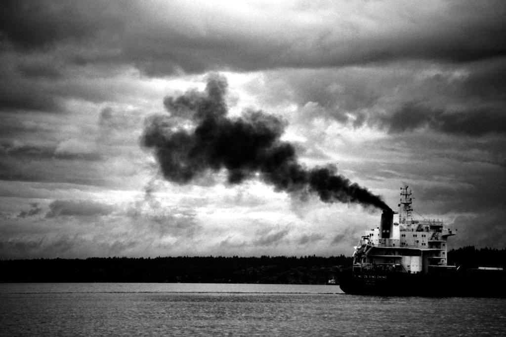 Black Puff by stephomy