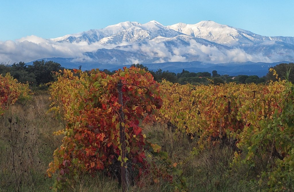 The first snowfall on Canigou by laroque