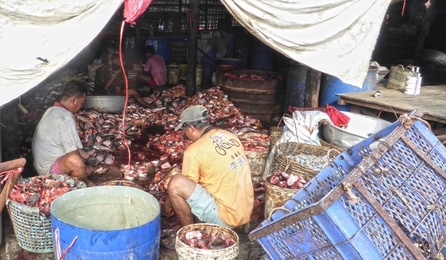 Cambodia:  Fermented Fish Paste Market  by helenhall