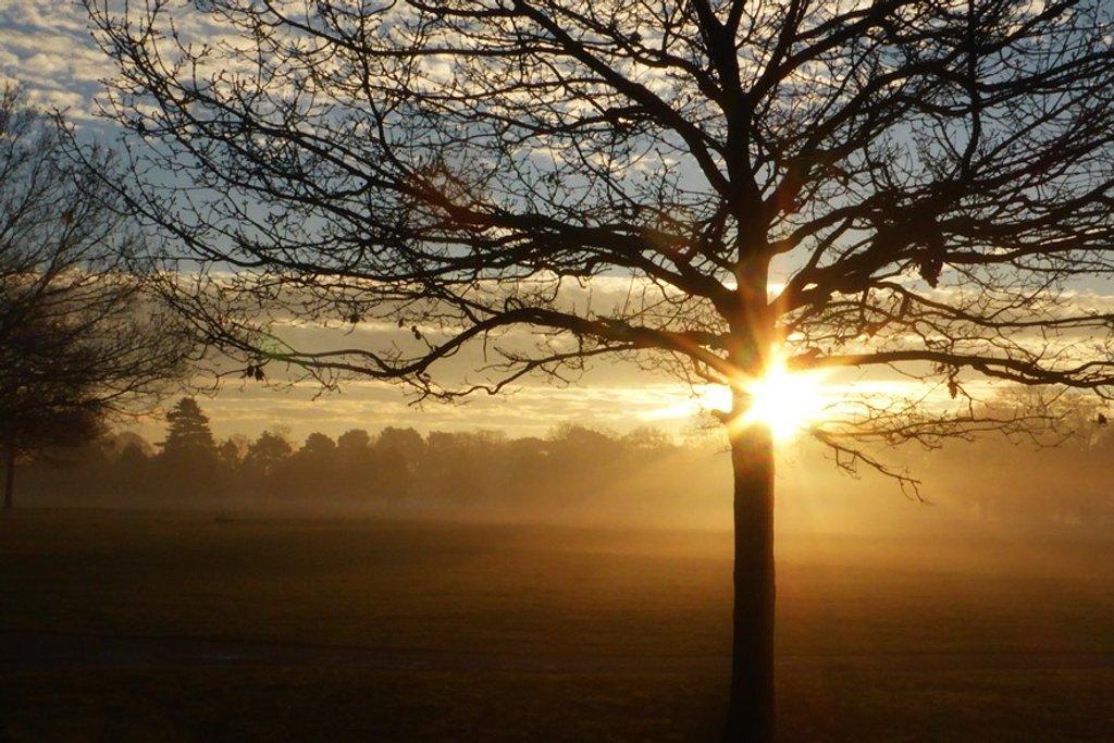 Good morning world! by helenhall