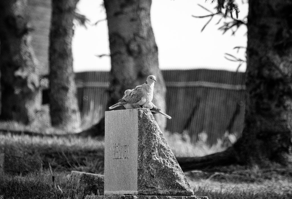 headstone by aecasey