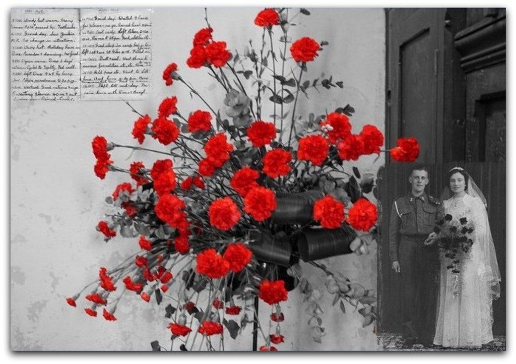 red carnations by quietpurplehaze
