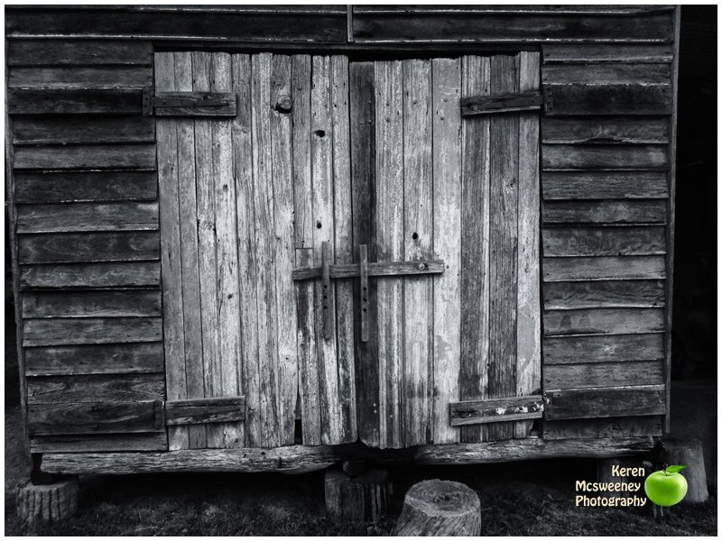 Barn door by kerenmcsweeney