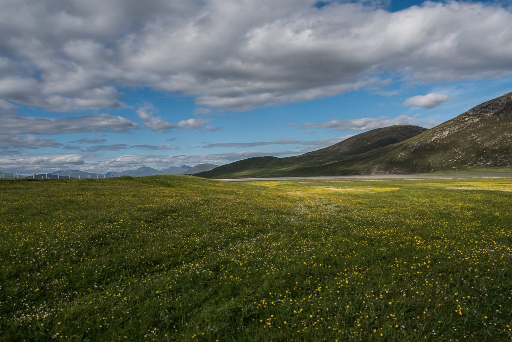 Machair by inthecloud5