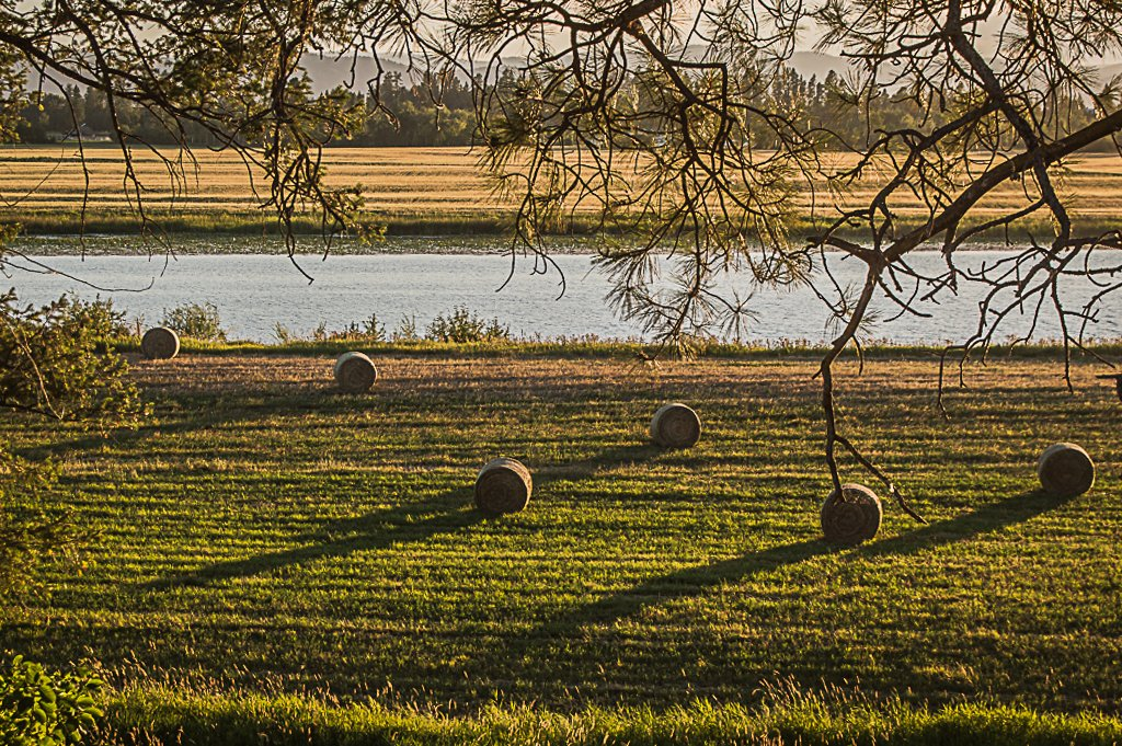Evening on the Farm by 365karly1