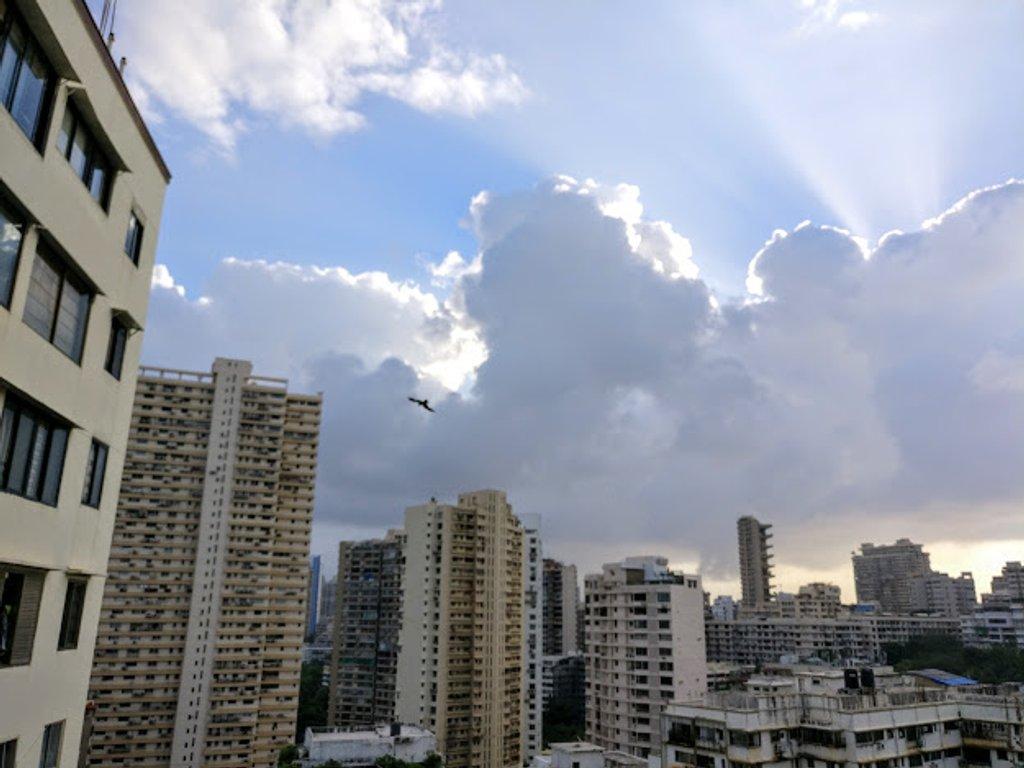 Morning Skies by veengupta