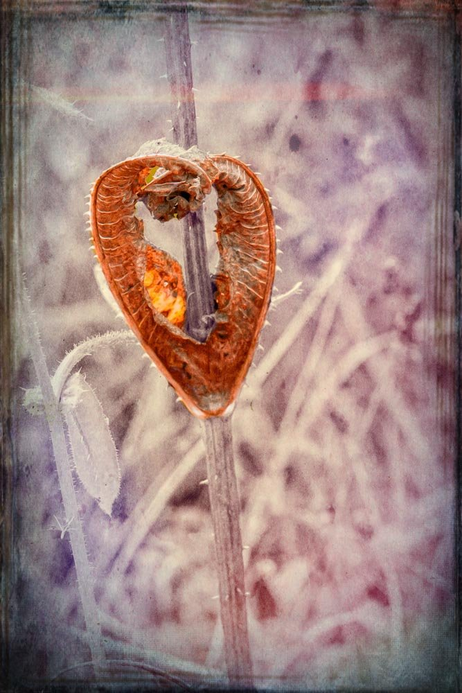 Abstract Heart by pamknowler